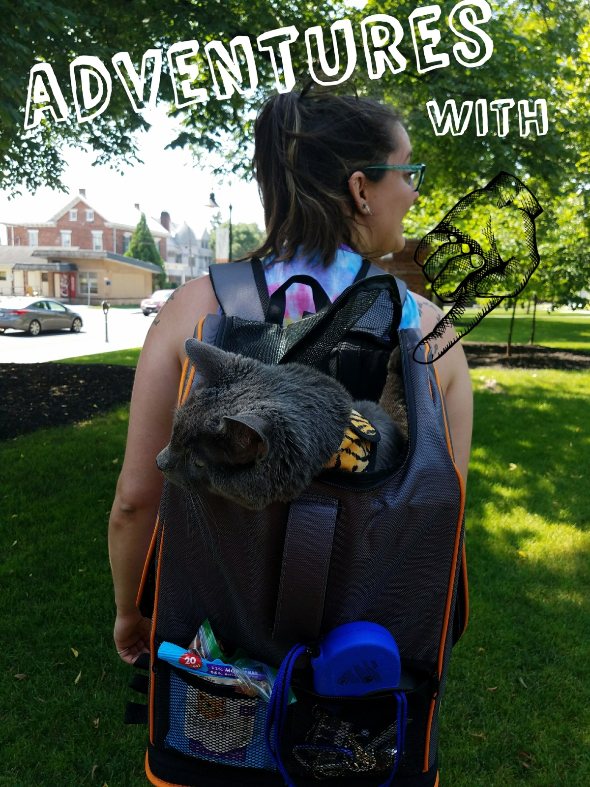 Adventures With Albus: Gettysburg College